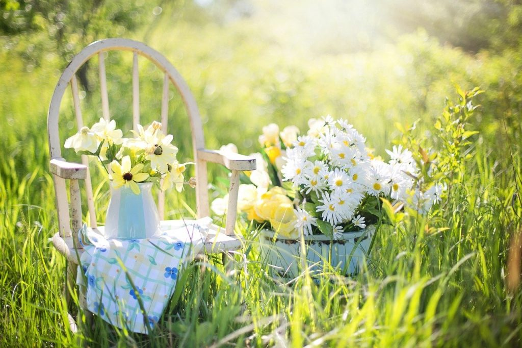 I diversi metodi di irrigazioni giardino